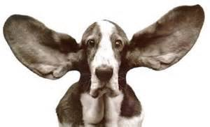 """""""Let they who have ears..."""""""